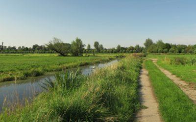 Ontdek nieuwe natuur in de Hollandse Waterlinie